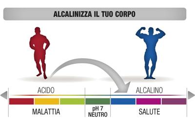 equilibrio acido base nell'alimentazione
