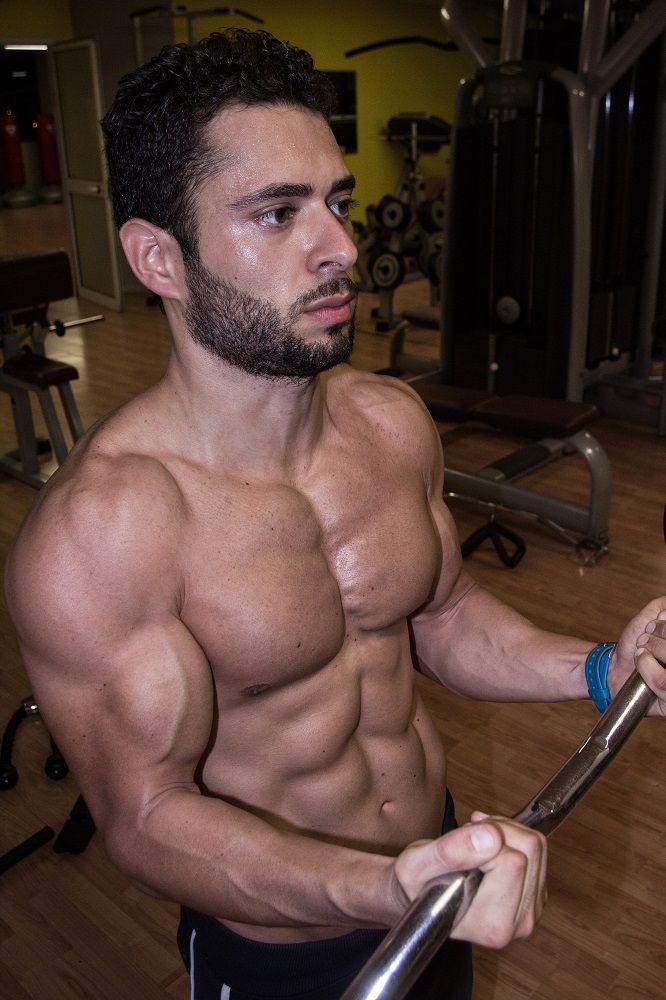 i muscoli sono fatti di acqua sali ed amminoacidi